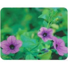 Коврик для мышки Buro пластиковый bu-m20012 цветы BU-M20012